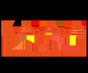 Lana_logo_pong_li